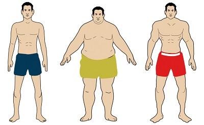 какие бывают типы телосложения человека?