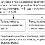 Культура восточных славян (+таблицы и схемы)